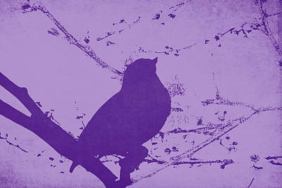 Purple Bird On A Branch Poster by Emily Kay