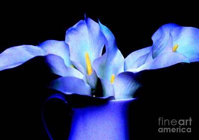 Purple Blue Calla Lillies Poster by Marsha Heiken