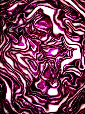 Poster featuring the photograph Purple Cabbage Topographical by David Dunham
