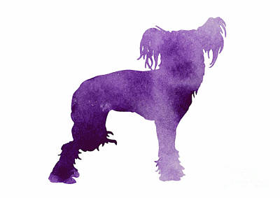 Purple Chinese Crested Dog Silhouette Poster by Joanna Szmerdt