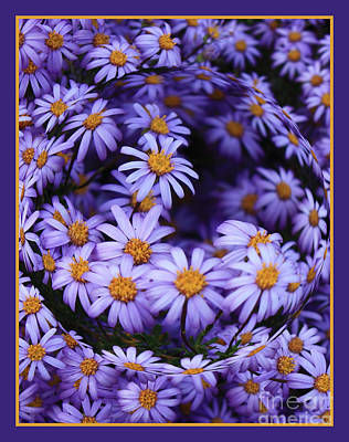Purple Daisy Abstract Poster by Carol Groenen