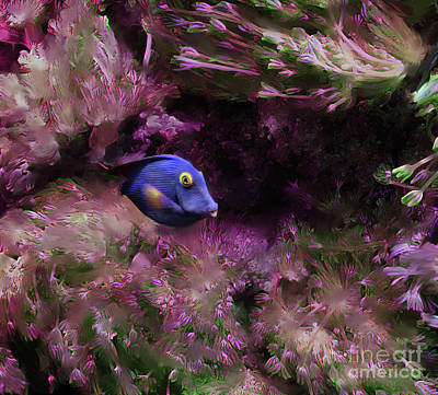 Purple Fish In Pink Grass Poster