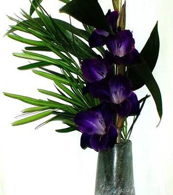 Purple Gladiola Poster