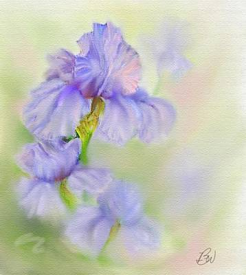Poster featuring the painting Purple Iris by Bonnie Willis