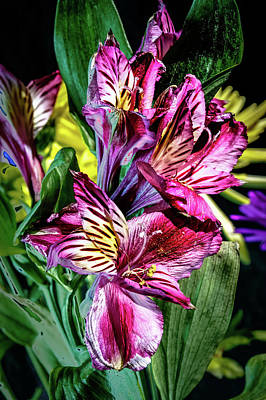 Purple Lily Poster by Mark Dunton