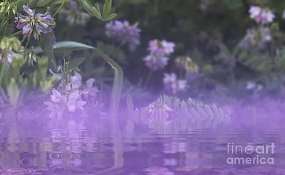 Purple Mist Poster by James Wollard