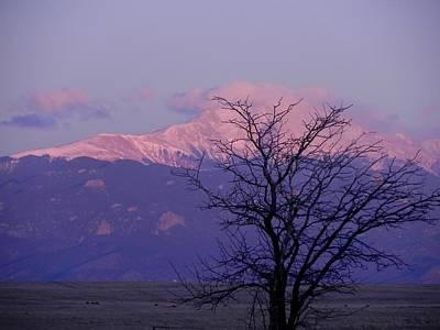 Purple Mountain Majesty Poster