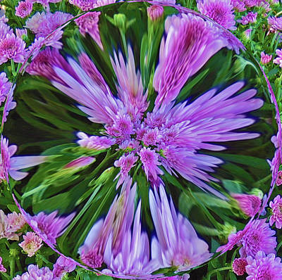 Purple Mums Pinched Poster