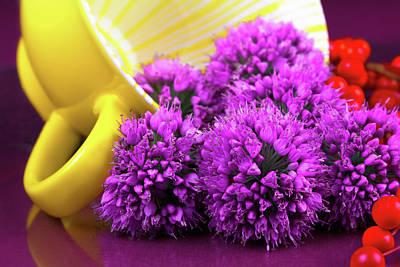 Purple Onion Flower Macro Poster