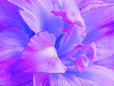 Purple Petals Abstract Poster by Gill Billington