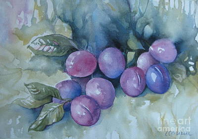 Poster featuring the painting Purple Plums by Elena Oleniuc