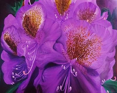 Purple Rhododendron Poster by Amelia Emery