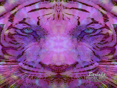Purple Tiger Poster by Barbara Tristan