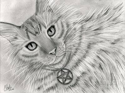 Poster featuring the drawing Purrfect Page Of Pentacles - Tarot Card Art by Carrie Hawks
