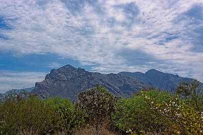 Poster featuring the photograph Pusch Ridge Morning H26 by Mark Myhaver