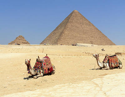 Poster featuring the photograph Pyramids Of Giza by Silvia Bruno