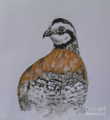 Quail 1 Poster by Kathy Carothers