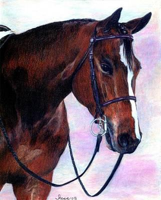Quarter Horse Hunter Under Saddle Portrait Poster
