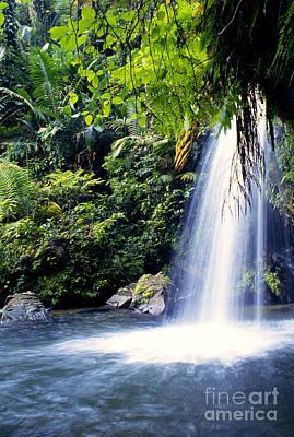 Quebrada Juan Diego Waterfall Poster