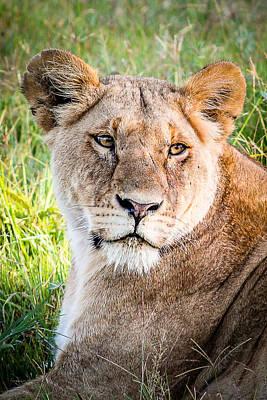 Queen Of The Mara Poster