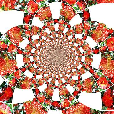 Poster featuring the digital art Quilted Flower by Amanda Eberly-Kudamik