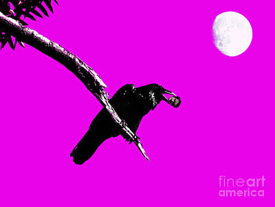 Quoth The Raven Nevermore . Magenta Poster by Wingsdomain Art and Photography