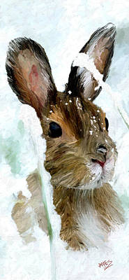 Rabbit In Snow Poster by James Shepherd