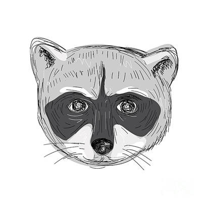 Raccoon Head Front Drawing Poster
