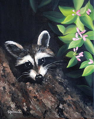 Raccoon Poster by Rachel Lawson