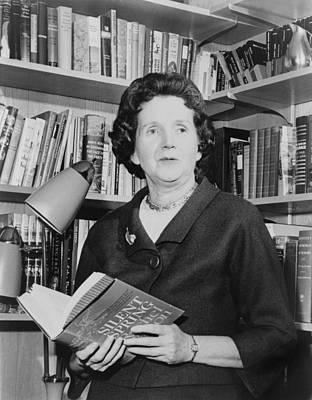 Rachel Carson 1907-1964, Biologist Poster by Everett
