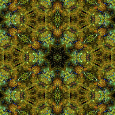 Radiation Of Medusa's Galaxy Mandala 28 Poster