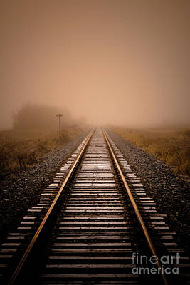 Rails V Poster by Ian McGregor