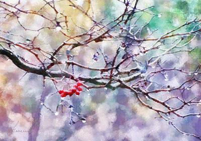 Rain Berries Poster