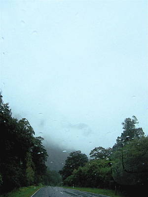 Rain Forest Rain Poster