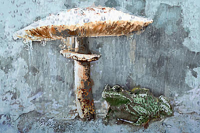 Rain On Toad Under Toadstool Umbrella Poster by Elaine Plesser
