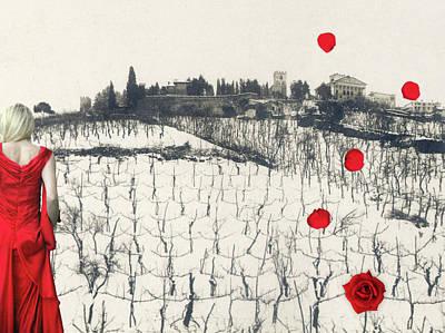 Rain Red Roses Poster