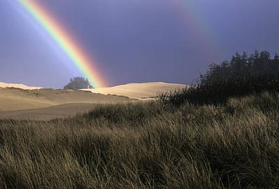 Rainbow And Dunes Poster