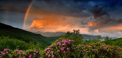 Rainbow And Rhododendrons On The Parkway Poster