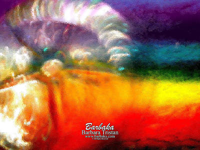 Poster featuring the photograph Rainbow Bliss #052833_ii by Barbara Tristan