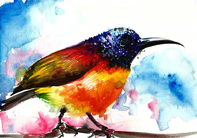 Rainbow Hummingbird Watercolor Poster