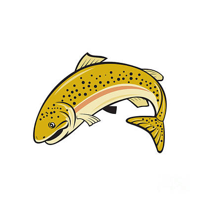 Rainbow Trout Jumping Cartoon Isolated Poster