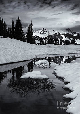 Rainier Winter Reflections Poster by Mike Dawson