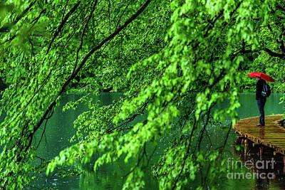Raining Serenity - Plitvice Lakes National Park, Croatia Poster