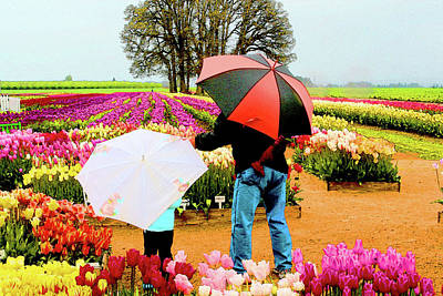 Rainy Day At The Tulip Farm Poster
