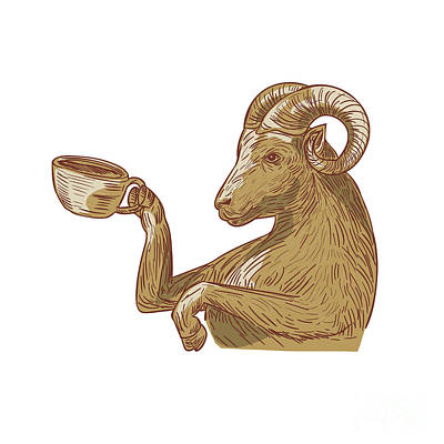 Ram Goat Drinking Coffee Drawing Poster