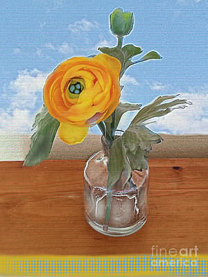 Poster featuring the digital art Ranunculus Spring by Alexis Rotella