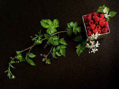 Raspberries On A Black Background Poster by Margaret Goodwin