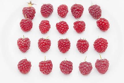 Raspberry Poster by Maj Seda