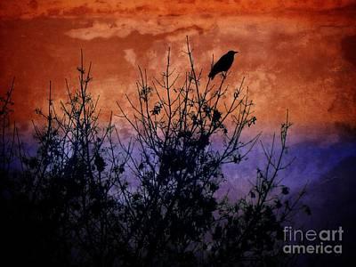 Raven Sentinel Poster