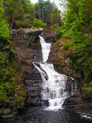 Raymondskill Falls Poster by Bill Cannon